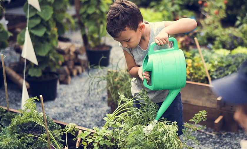 Valuable Lessons Gardening Teaches Children